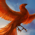 Profile picture of Phoenix C